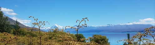 Mount Cook (Aoraki) National Park
