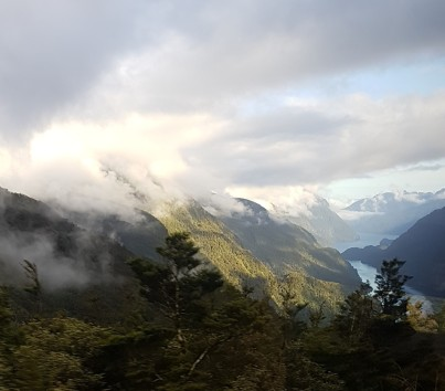 Out of the Bus Window - Doubtful Sound