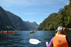 Enjoying the Sounds in our group of Kayakers