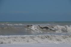 Grey waves