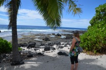 Enjoying the shade from the coconut tree