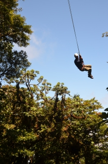 Tarzan swinging