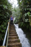 Stairway to the waterfall