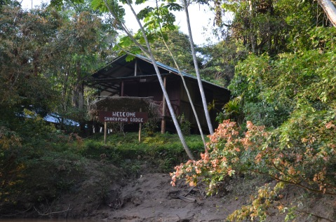 Welcome to Shiripuno Lodge