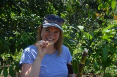 Gemma eating the sugar cane