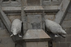 Armadillos on the Basilica