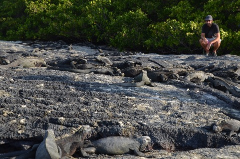 Kadin and the Marine Iguanas