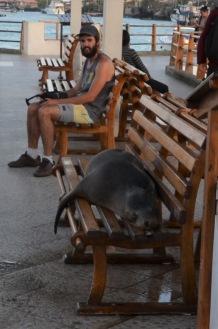A real seat hog