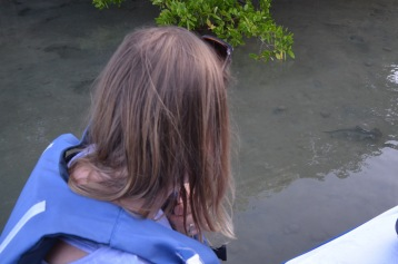 Gemma looking at the hammerhead
