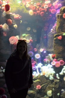I live in an an anemone