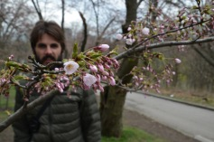 Kadin and the early blossoms