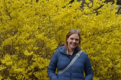 Bright yellow tree