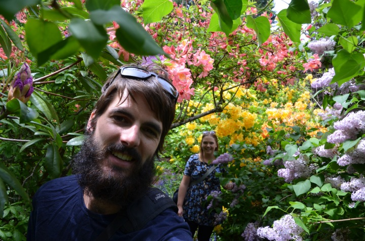 Rhododendron selfie