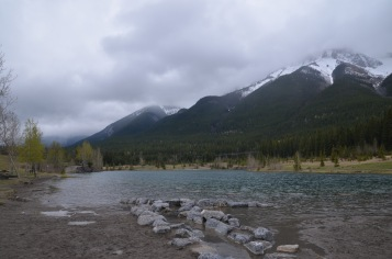 Small lake walk