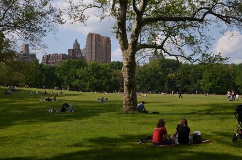 Picnic spot in the park