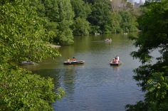 Row boats in the park