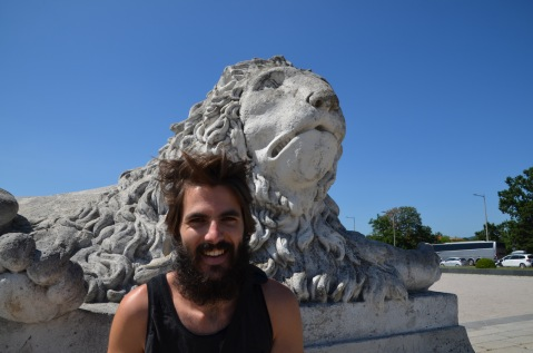 Lion and a statue