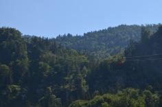 Gondola over the tree tops