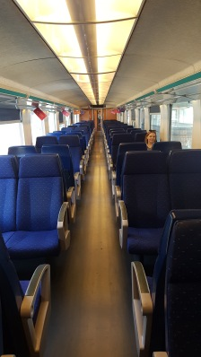 Loner on the train