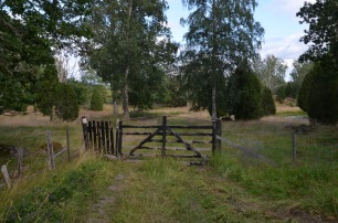 Gate to the meadow