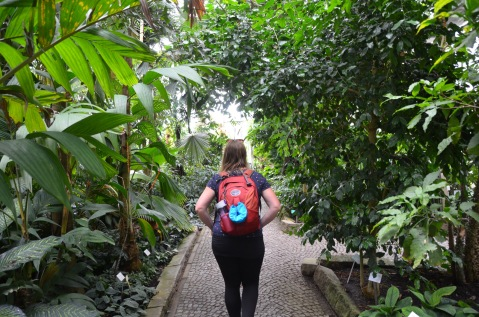 Greenhouse walks