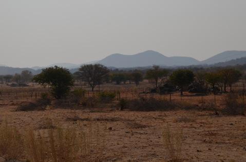 Campsite landscape