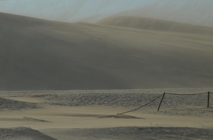 Standstorm on the dunes