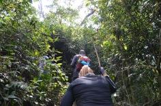 Climbing back up