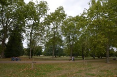 Hyde Park - Autumn is starting