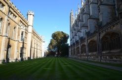 University lawns