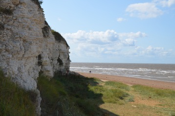 Cliff and beach