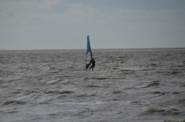 Lonely windsurfer