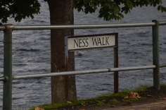 Walking the Ness