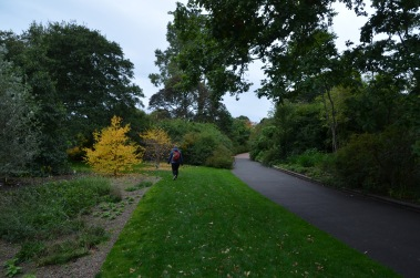 Botanical Gardens Walk