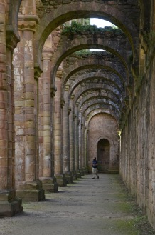 Walking through the arches