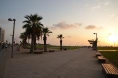 Sunny Boulevard