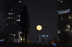 Kadin and the moon