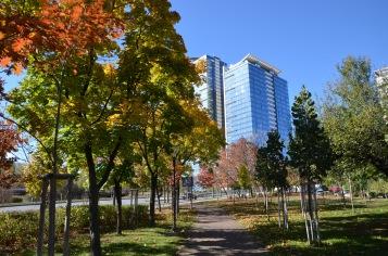 Inner city park