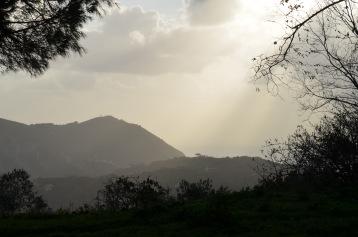 View towards coastal mountains