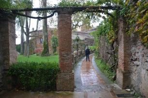 Rainy visit