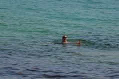 Gemma swimming